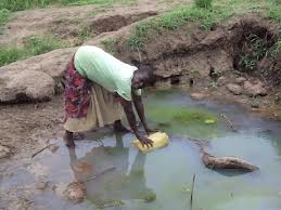 young woman collecting water from a dirty dictch